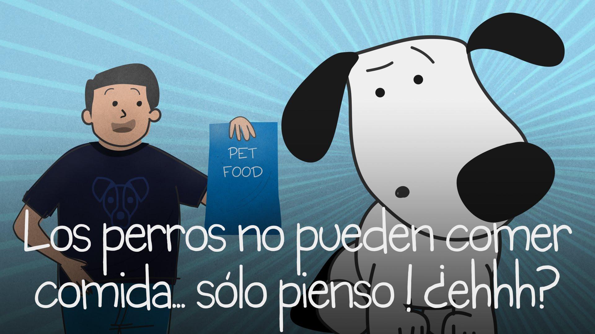 Los perros no pueden comer comida... sólo pienso ! ¿ehhh?